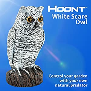 Hoont Scarecrow Realistic Owl Decoy Pest Bird and Rodent Repellent with Flashing Eyes + Frightening Sound – Motion Activated with Multi-directional Sensors -Frightens Birds, Squirrels, etc. [UPGRADED]