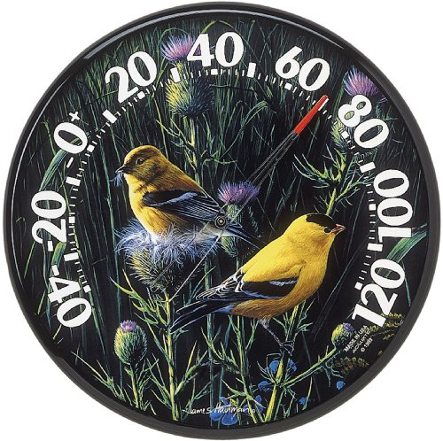 AcuRite 01711 12.5-Inch Wall Thermometer, Goldfinches (Thermometer Decorative Wall)