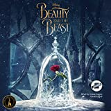 Bargain Audio Book - Beauty and the Beast