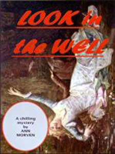 Look In The Well