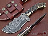 Cheap ColdLand Knives Christmas Gift Retail More Than 250$ Special Offer Custom Handmade Damascus Steel Tracker Hunting Knife with Ram Horn Z07
