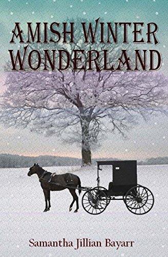 Amish Winter Wonderland: Book Two -
