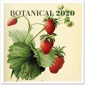 ERIK - Botanical 2020 Wall Calendar, 16 Months, 30 x 30cm