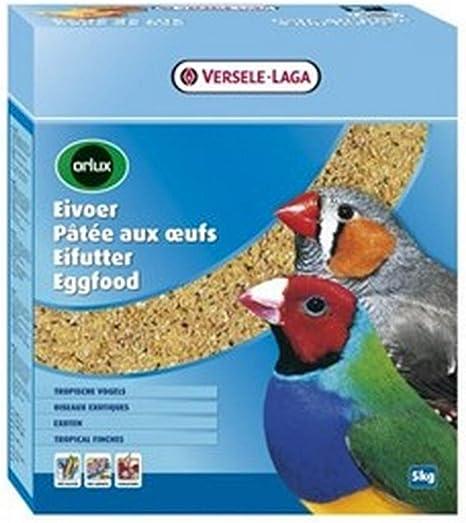 Orlux Pasta de huevo seca pájaros exóticos 1 Kg: Amazon.es ...