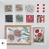 "MOSAIC ART KIT DIY WILDFLOWERS POPPIES 9""x12.5"" - Birthday / Wedding / Anniversary gift ideas - Mosaic wall art - Feng Shui success - Creative hobbies - Craft kits for adults"