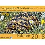 Europäische Schildkröten in der freien Natur: European Turtles and Tortoises in natural surroundings