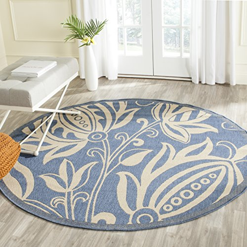 Blue Outdoor Rug 9x12: Round Outdoor Rugs For Patios: Amazon.com
