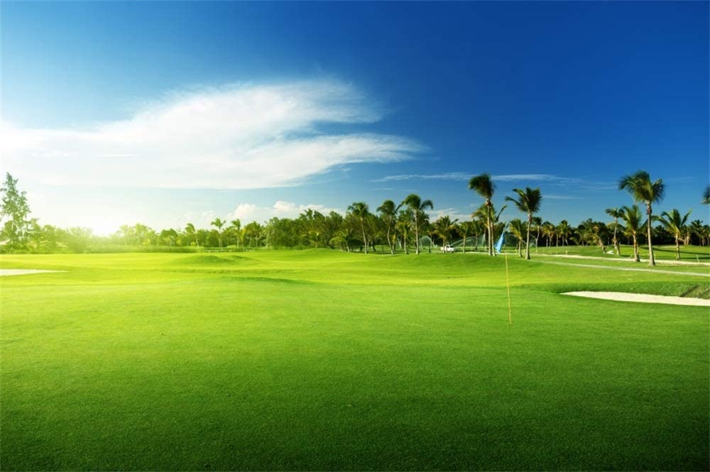 Amazon Com Aofoto 9x6ft Golf Course Photography Backdrop Tropical Summer Palm Trees Green Grass Blue Sky Holiday Relax Resort Vacation Photography Background Vinyl Family Adults Portrait Photo Studio Props Camera