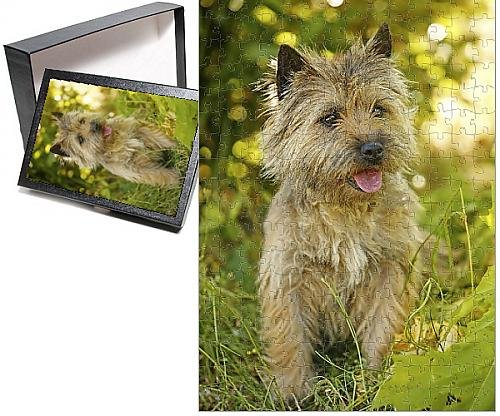 Photo Jigsaw Puzzle of Dog - Cairn Terrier