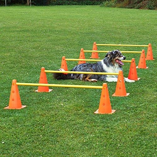 Kegel-Hürden 5er Set, orange/gelb, mit Tragetasche, für Agility - Hundetraining