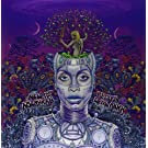New Amerykah Part Two: Return of the Ankh [Vinyl]