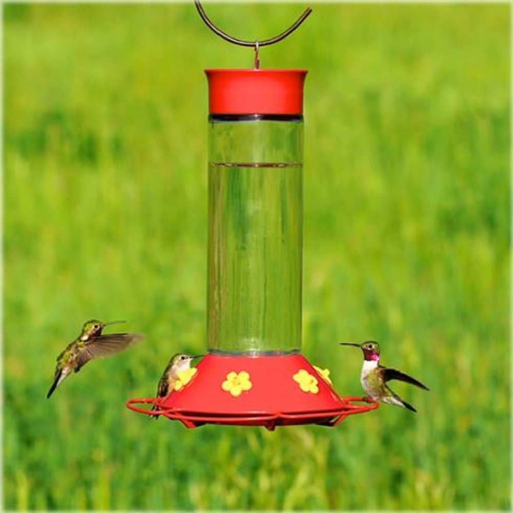 s glass buy gardener hummingbird supply pressed humingbird feeder