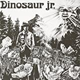 Dinosaur Jr / 3