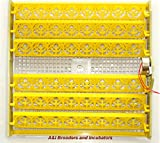 AUTOMATIC 48 Eggs Chicken Quail Turner Tray for Incubator with 110 Volt motor NEW!