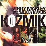 : Kozmik [Vinyl]