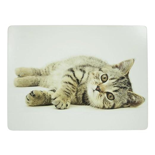 Mars & More Juego de mesa 4 piezas de Juego, gato tumbado, scpmkt ...
