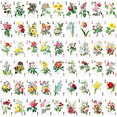 Flowers Roses Playing Cards (Poker Deck 54 Cards All Different) Vintage Graden Flowers Roses Wildflowers Engraving Painting by Redoute: Sports & Outdoors