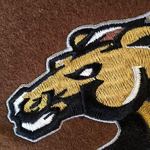 NCAA Western Michigan Broncos Heritage Banner