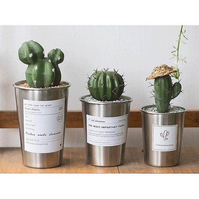 Macetas para cactushttps://amzn.to/2Pdn673