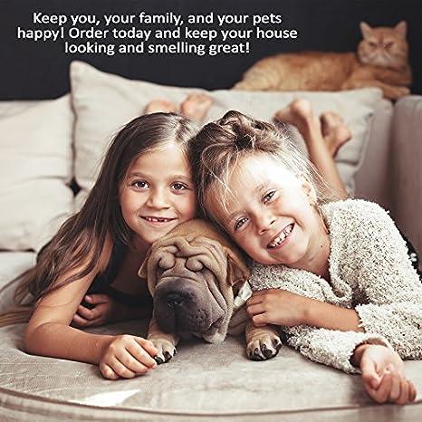 Pet olor de orina y quitamanchas 32 oz - elimina mascota elimina manchas y olores, la mascota de alfombras, tapicería y muchos otros superficies - grado ...
