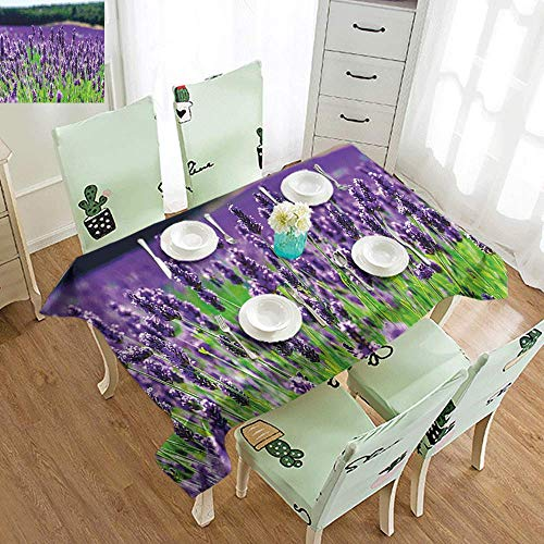 DILITECK Waterproof Tablecloth Lavender Scenic Field in France Fragrant Blooming Countryside Agriculture Rural Theme Table Decoration W52 xL72 Violet Green