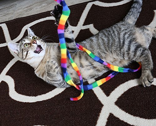 61E 7K24icL - Cat Dancer Products Rainbow Cat Charmer