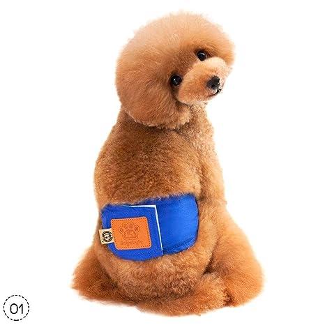 Teabelle Ropa interior cómoda para perro hembra y macho, lavable, reutilizable, para perros