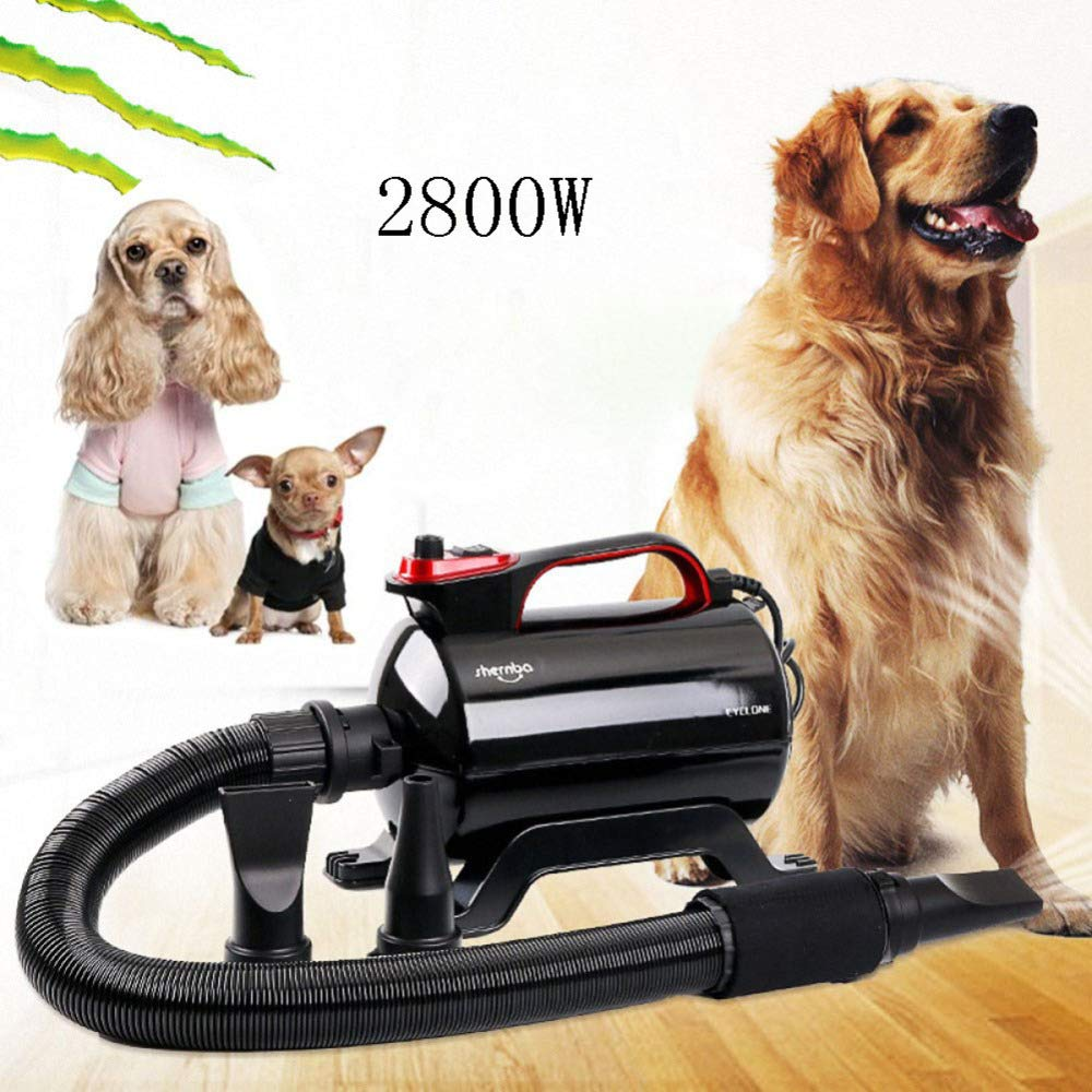 Black(2800w) 2800w Variable Speed Low Noise High Velocity Stepless Dryer Adjustable Hose Fixed Hard Tube 3 Nozzles On Stand Wheels Dog Cat Hairdryer,Black(2800W)