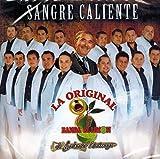 Banda El Limon de Salvador Lizarraga