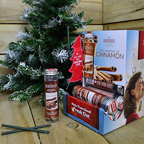 Scentsicles, Cinnamon Scented Ornament Fragrance Sticks (1 Bottle, 6 Sticks)