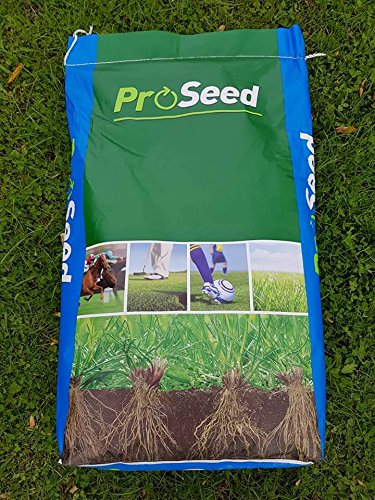 20Kg Rapid PRO Seed Premium Quality Grass Seed Hard Wearing Lawn 20 Kg Pretty Wild Seeds