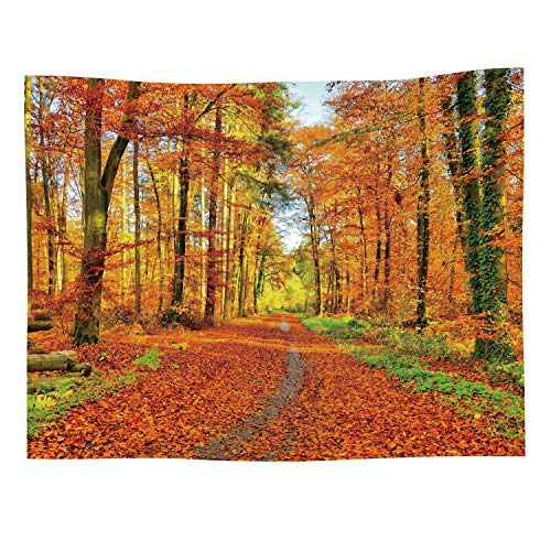 Autumn Landscape Tapestry Fall Nature Scenic Scenery Trees Woods Forest Plant Leaves Art Decor Wall Hanging for Bedroom Living Room ()