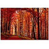 Trademark Fine Art The Red Way by Philippe Sainte-Laudy Canvas Wall Art, 30x47-Inch