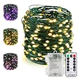 ER CHEN Fairy Lights with Remote, Battery Operated Green Copper Wire 66Ft 200 LED String Lights Color Changing 8 Modes Christmas Lights with Timer for Bedroom, Patio, Garden, Yard (Warm White&Purple)