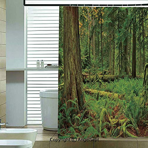 - Printed Shower Curtains,Idyllic-Lush-Rainforest-in-Canadian-Island-with-Ferns-Moss-on-Tree-Nature-Photo,72x72 inch,12 Hooks Bath Curtain Bathroom Decor,Green