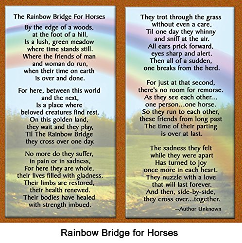 Rainbow-Bridge-for-Horses-Sympathy-Picture-Frame-Gift-and-Memorial-with-optional-custom-photo-editing-Deep-Rich-Brown-with-Foil-Accent