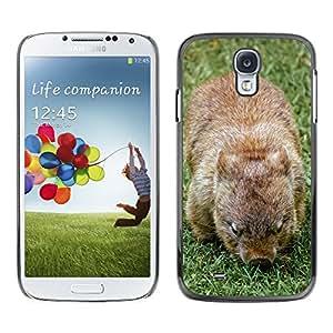 Super Stella Slim PC Hard Case Cover Skin Armor Shell Protection // M00107166 Wombat Marsupial Furry Native // Samsung Galaxy S4 S IV SIV i9500