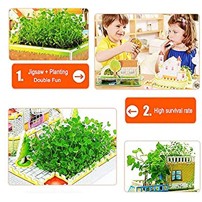 Jigsaw Puzzles Ecological Plants 3D Puzzle Series Delicate 3D Dollhouse Puzzles with Real Green Plants Cultivation: Toys & Games