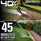 Greenworks G-MAX 40V Cordless String Trimmer and