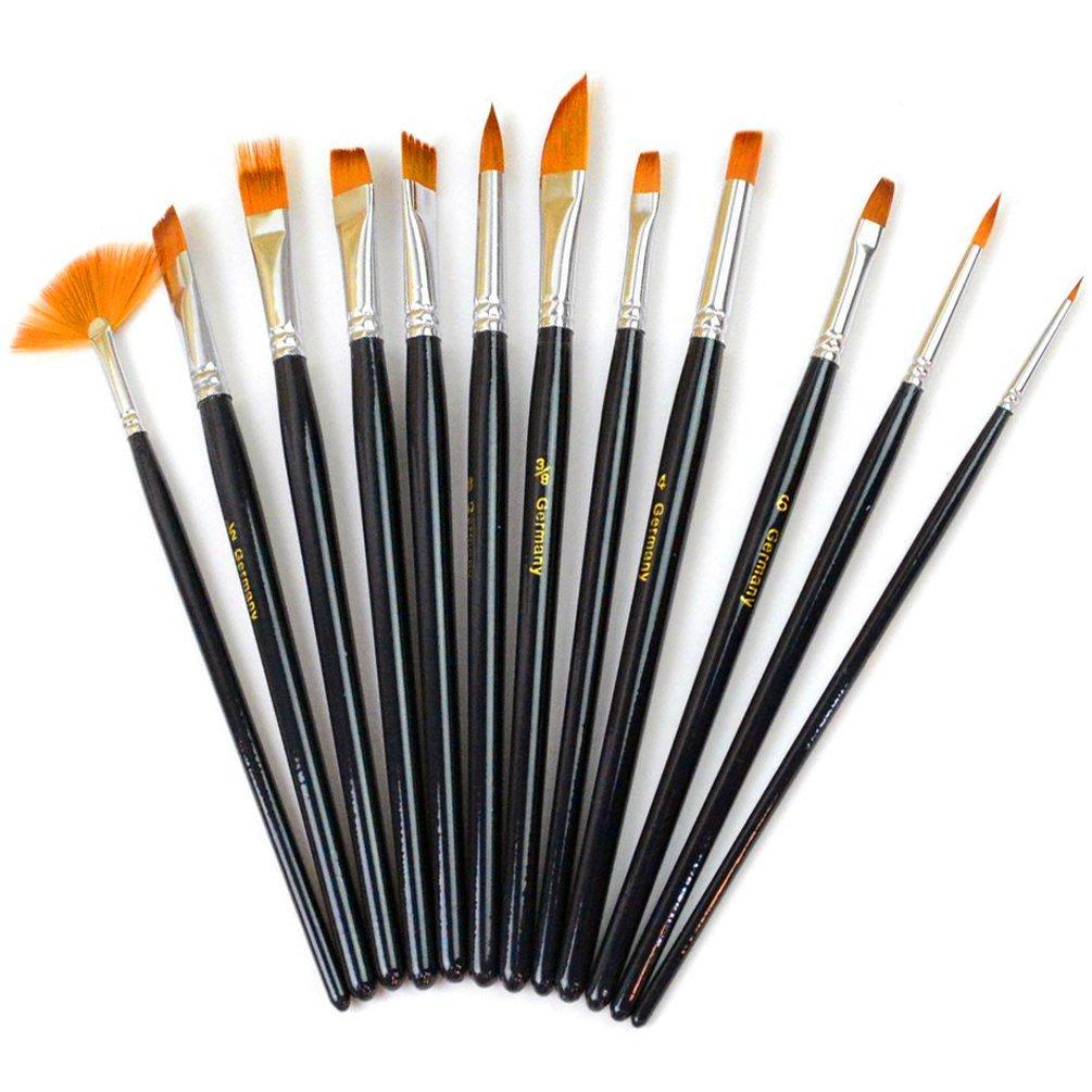 Xpassion 12-Piece Professional Paint Brush Set Black 12 Artist Bursh 14