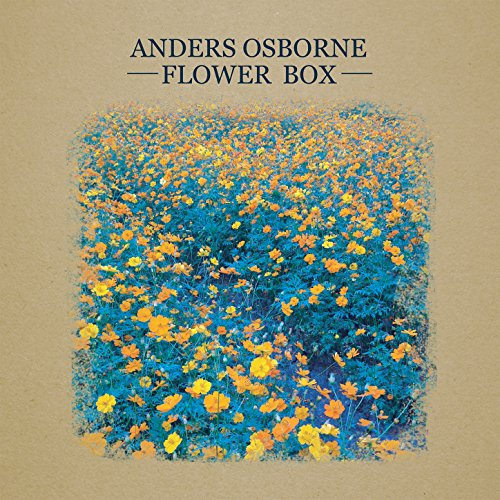 Flower Box (Neil Young Best Guitar Solo)