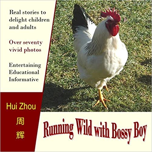 Running Wild With Bossy Boy chicken book
