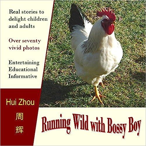 Running Wild With Bossy Boy chicken book