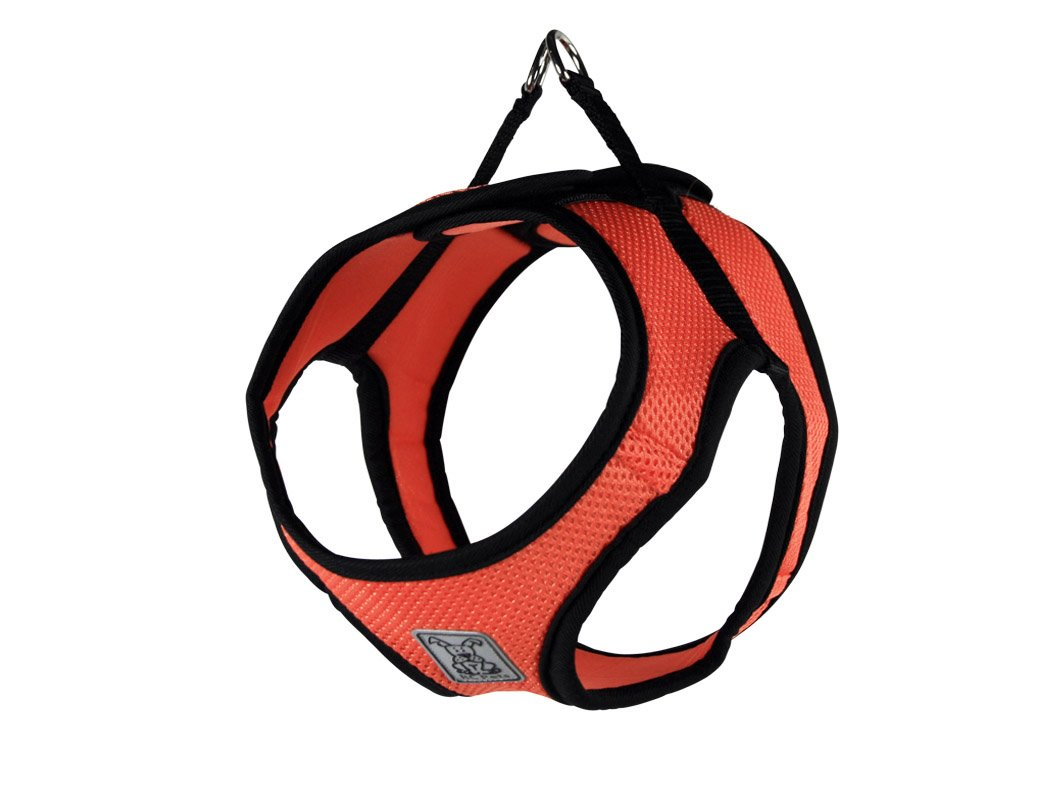 RC Pet Products Cirque Soft Walking Step-in Dog Harness, Small, Coral