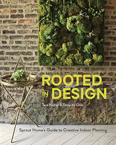 Cheap  Rooted in Design: Sprout Home's Guide to Creative Indoor Planting