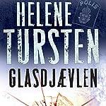 Glasdjævlen (Irene Huss serien 4) | Helene Tursten