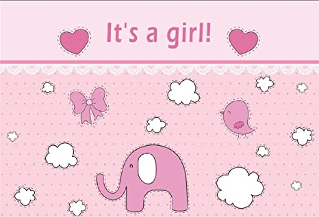 Amazon Com Csfoto 8x6ft Background For Sweet Girl Baby Shower
