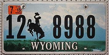 Wyoming Nummernschild Usa Kennzeichen Motiv Cowboy Rodeo Landschaft Flaches Blechschild Us License Plate Auto
