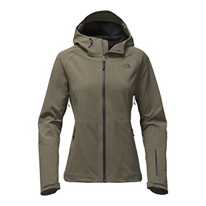 00949bf38 Amazon.com: The North Face Apex Flex GTX Jacket - Women's Small ...