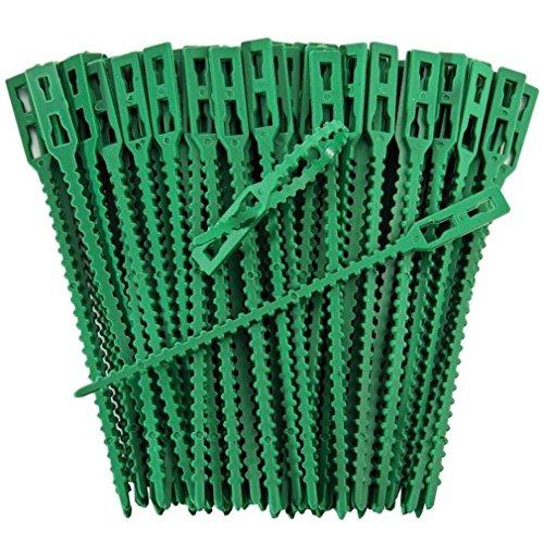 Pflanzenclips starke stabile Pflanzenklammern extra groß für Spaliere Rosenbogen Rankhilfe etc , iapyx® (99)